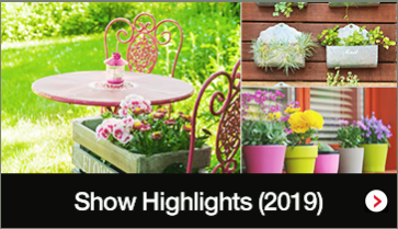 Show Highlights (2019)