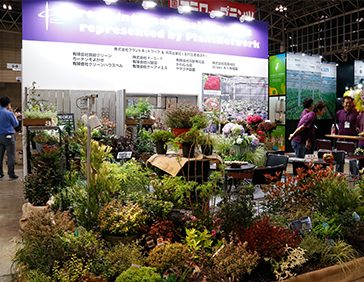 NEW Garden Flower & Plant Zone